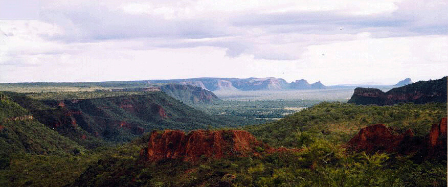 Chapada, unknown photographer. Thanks to ismb2006.cbi.cnptia.embrapa.br